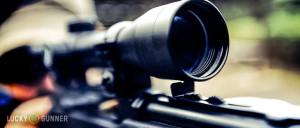 Optics v Iron Sights
