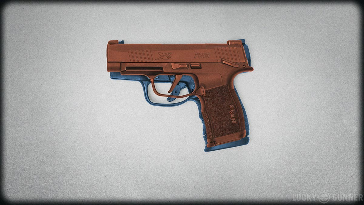Walther PPS M2 and Sig P365 XL overlay