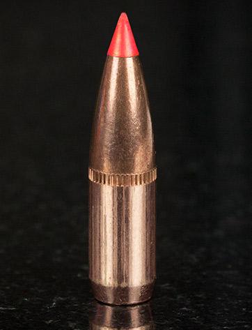 Hornady SST bullet