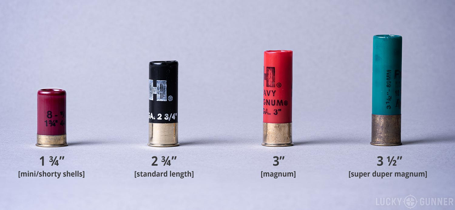 12 gauge shot shell sizes